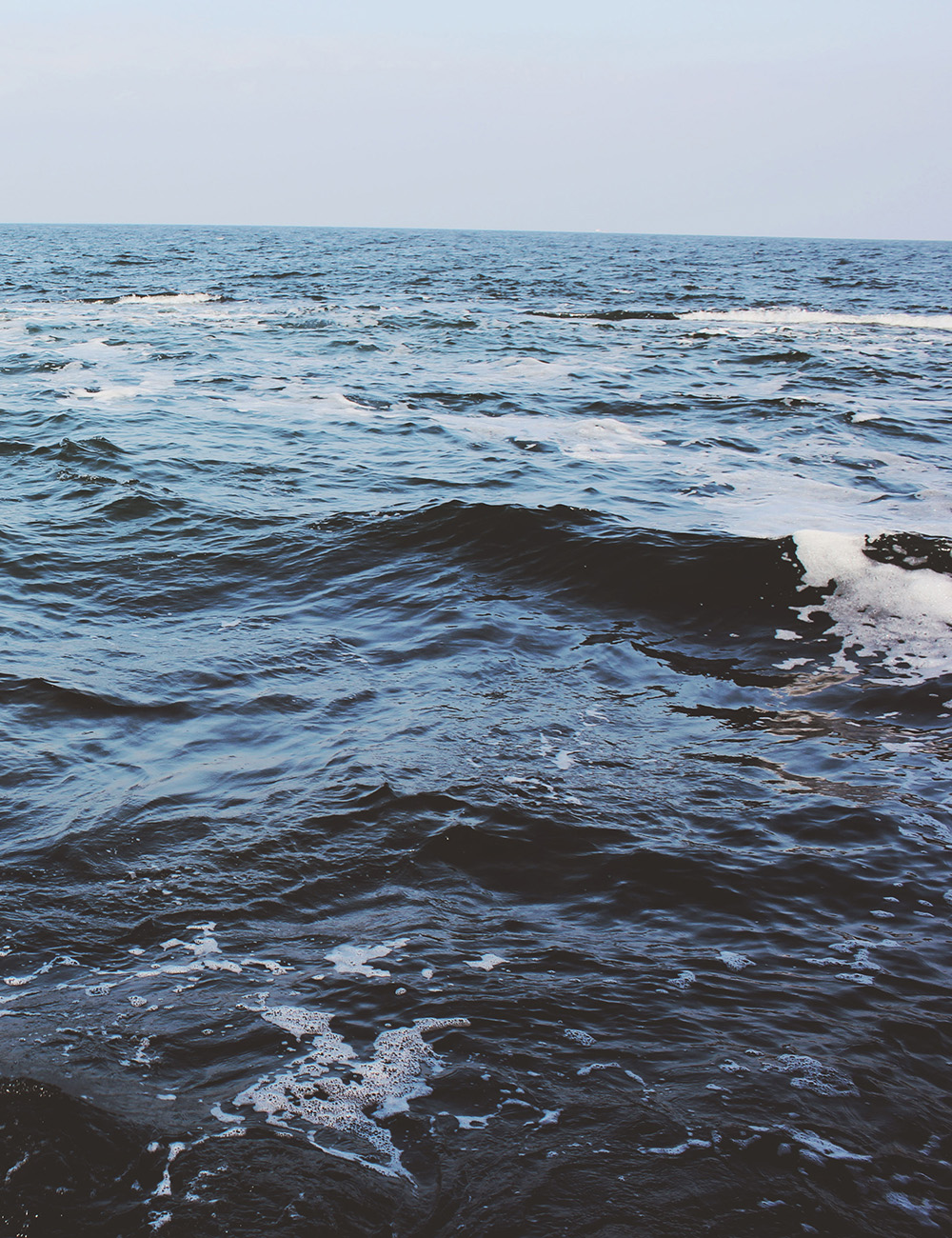 sea-tall